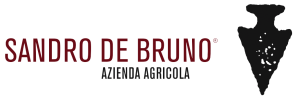 SandroDeBruno_Logo